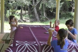 white cedar creek picnic