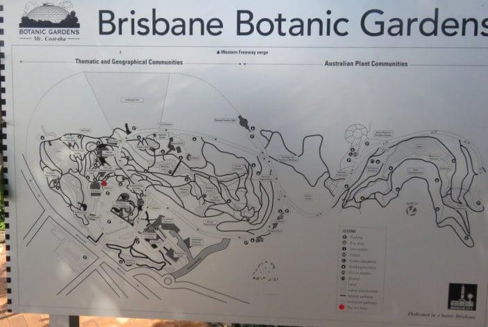 Botanical Gardens mount cootha map