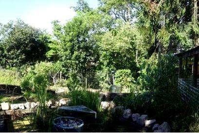 green corner ashgrove