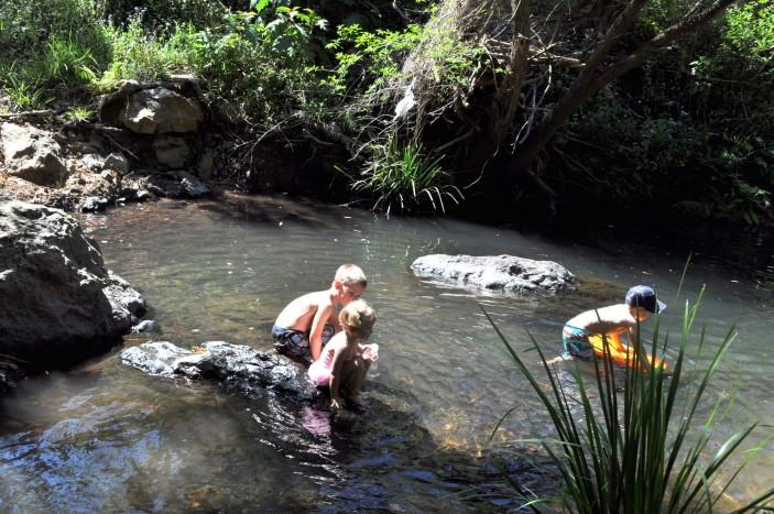 Cedar Creek Swimming