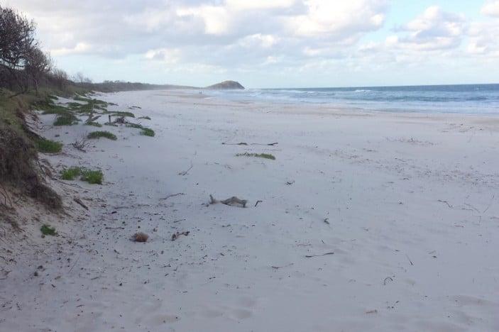 Hastings Point Beach