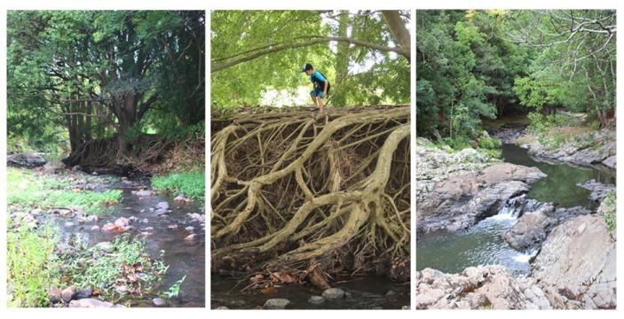 currumbin rock pools, running water, currumbin creek