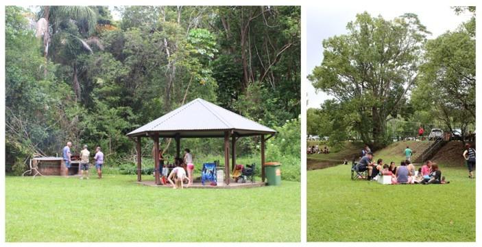 currumbin picnic areas