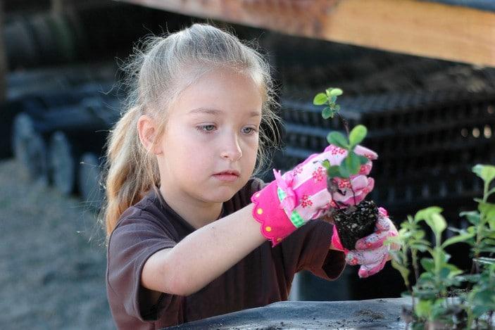 girl planting seedlings