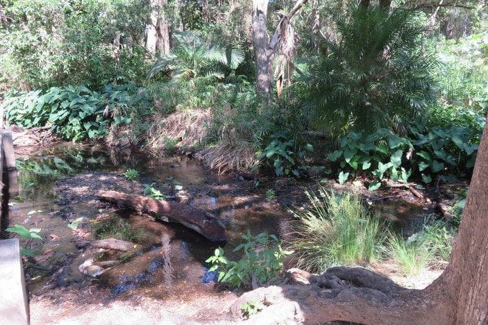 Creekside Park, Kenmore Hills
