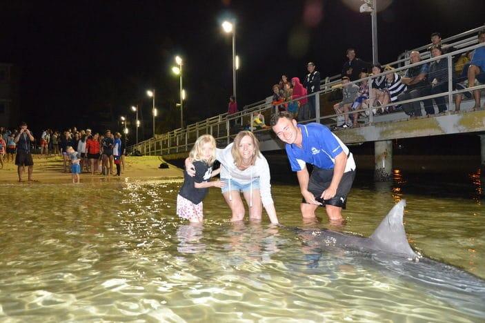 Hand-feeding wild dolphin