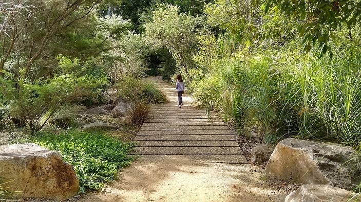 Maroochydore Botanic Gardens