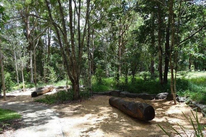 bushwalking track maroochydore
